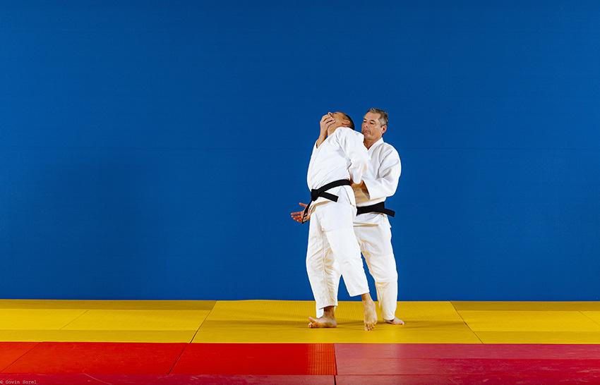 Techniques de jujitsu